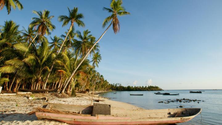 Encuentra el mejor lugar para bucear en arrecifes en Wanci