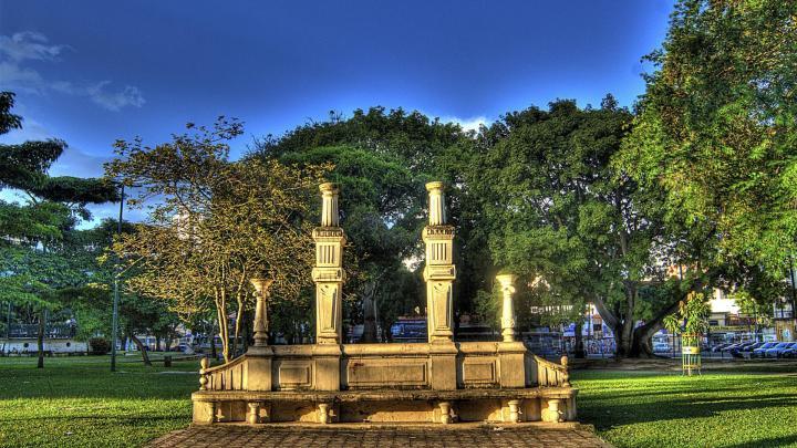 Encuentra el mejor lugar para la selva en Belém