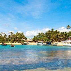 Praia do Forte 204 hoteles