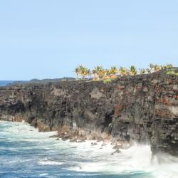 Hawaiian Paradise Park 7 Hotels