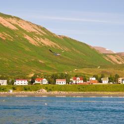 Ólafsfjörður 5 отелей