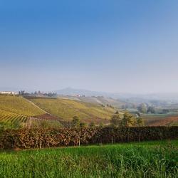 San Salvatore Monferrato 6 hotels