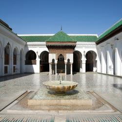 Fez 540 hotels