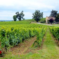 Moulon-sur-Dordogne 4 hôtels