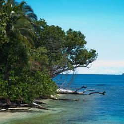 Honiara 10 hotels