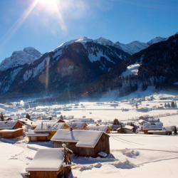 Au im Bregenzerwald 4 Wellnesshotels