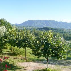 San Donato Val di Comino 12 hotels