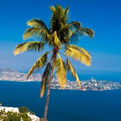 Acapulco 704 hoteles