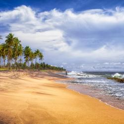 Negombo 806 hotels