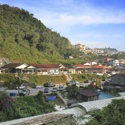 Tanah Rata 149 hotels