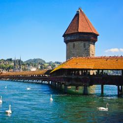 Luzern 37 self catering properties