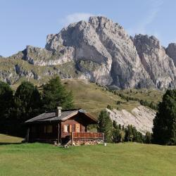 Selva di Val Gardena 75 pet-friendly hotels