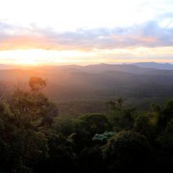 Monteverde 337 hôtels