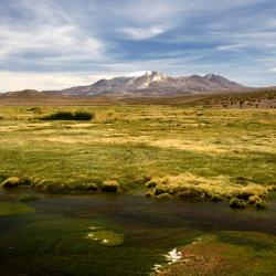 Oruro 15 hotels