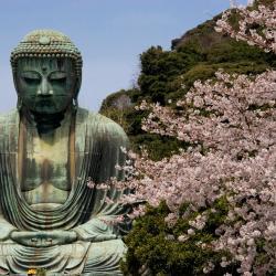 Kamakura 61 hotel