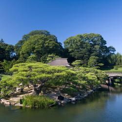 Okayama 77 hotels