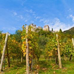 San Michele all'Adige 3 hotels