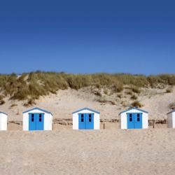 De Koog 21 beach hotels
