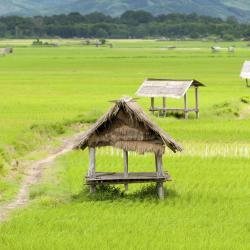 Louang Namtha 3 budget hotels