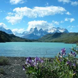 Torres del Paine 21 otel