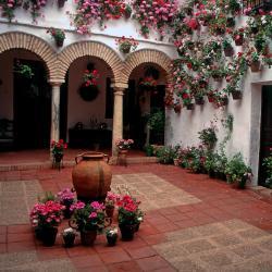 Kordobos Priegas 41 viešbučių