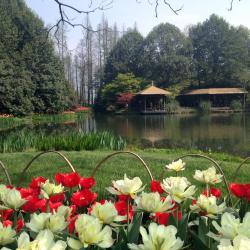 Fuyang 10 hotels