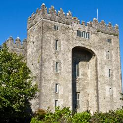 Bunratty 43 hotels