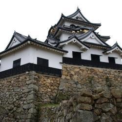 Hikone 25 hotels