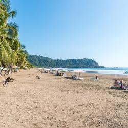 Nicoya 5 pet-friendly hotels