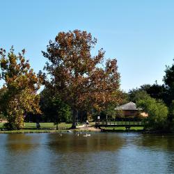 The 30 Best Louisiana Hotels — Where To Stay in Louisiana, USA
