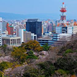 Wakayama 37 hotels