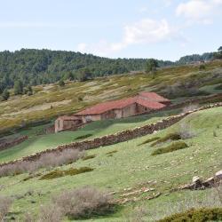 Camarena de la Sierra 12 hoteles