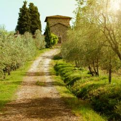 Greve in Chianti 154 hotels