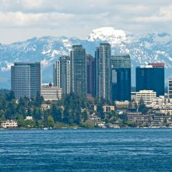 Bellevue 50 hotels