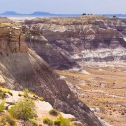 Check Out These Por Cities In Petrified Forest National Park