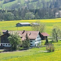 Waldkraiburg 5 hotéis