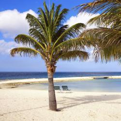 Oranjestad 14 hotels