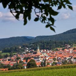 Waldmünchen 32 hôtels