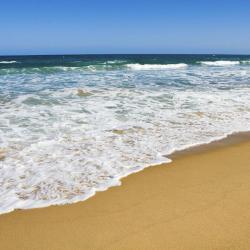 Avoca Beach 18 hotels
