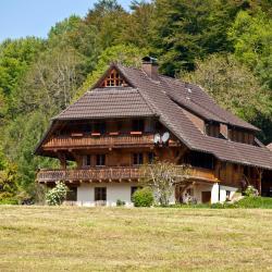 Eisenbach (Hochschwarzwald) 14 Hotels