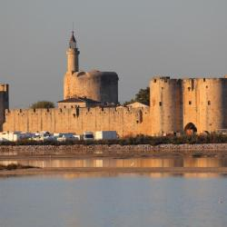 Aigues-Mortes 110 hotels