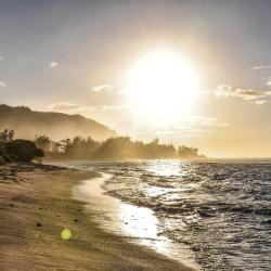 Haleiwa 18 hotels