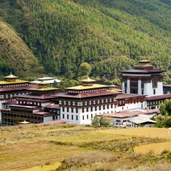 Thimphu 63 hotels