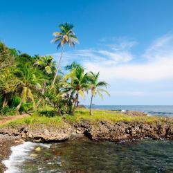 Капургана 33 хотела в близост до плажа