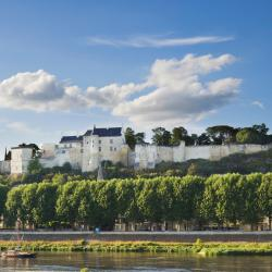 Chinon 49 hotels