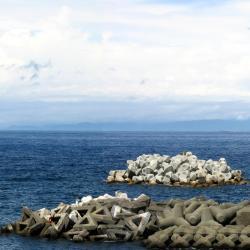 Oshima 3 pet-friendly hotels