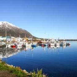 Dalvík 12 hotels