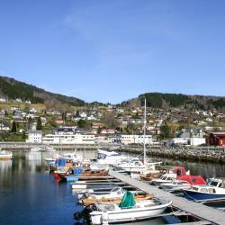 Sjøholt 5 hotels