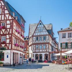 Mainz 43 pet-friendly hotels