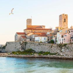 Antibes 814 hotels